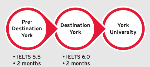 Chart showing the steps to gain York University admission from the Pre-Destination York program