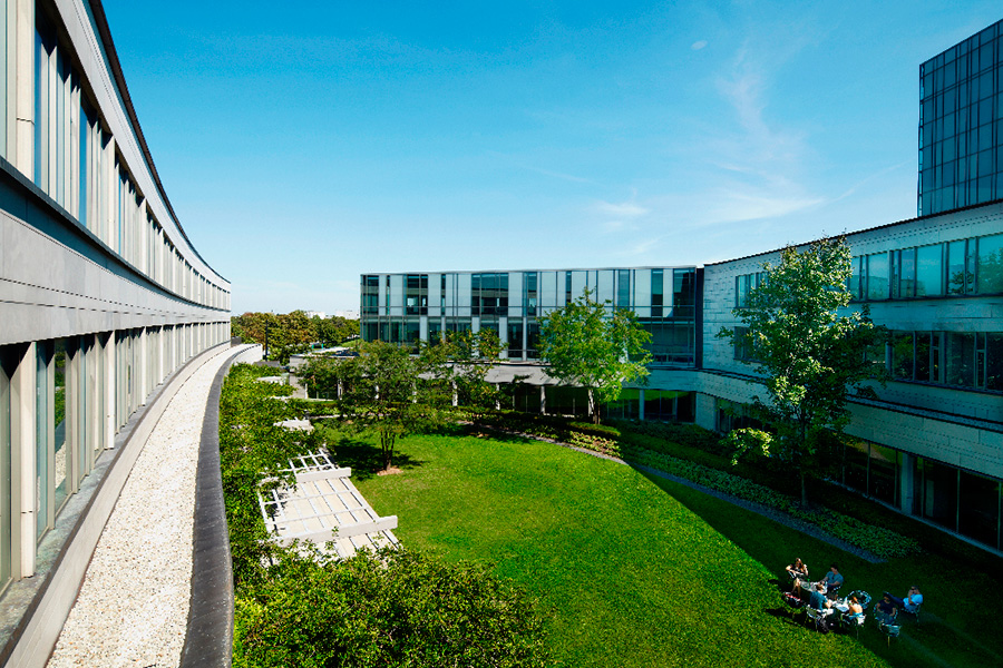 Exterior view of the Seymour Schulich building courtyard