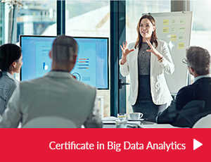 Certificate in Big Data Analytics